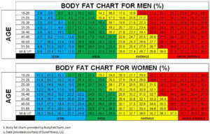 body fat ratio