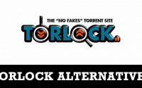 Best Alternatives to Torlock